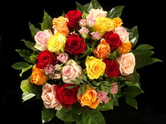 Roses Symphony